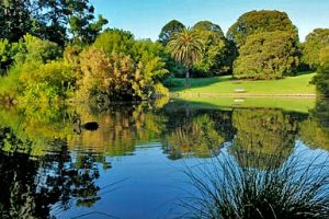 The Royal Botanic Gardens